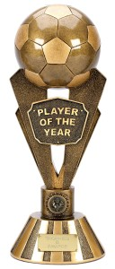 Senior Player Of The Year Awards